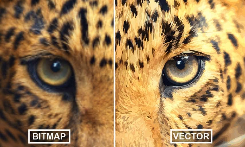 Get impressive bitmap-to-vector trace results